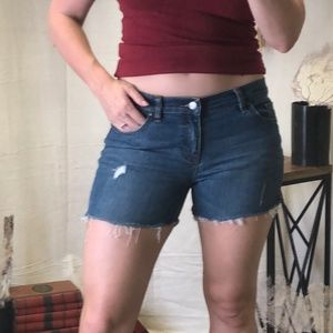New York & Co cut off distressed jean shorts